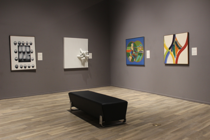 Installation Shot of Modern Art Gallery